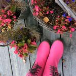 Anno Paananen står i rosa stövlar med svarta stövlar på ett trädäck vid tre krukor fyllda med rosa och blå blommor.